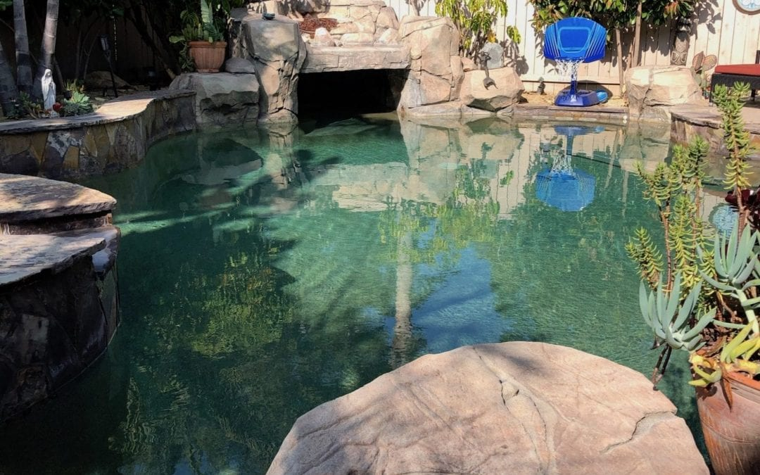 Recycling Pool Water